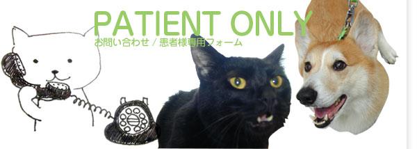 動物病院 東京都 久山獣医科病院